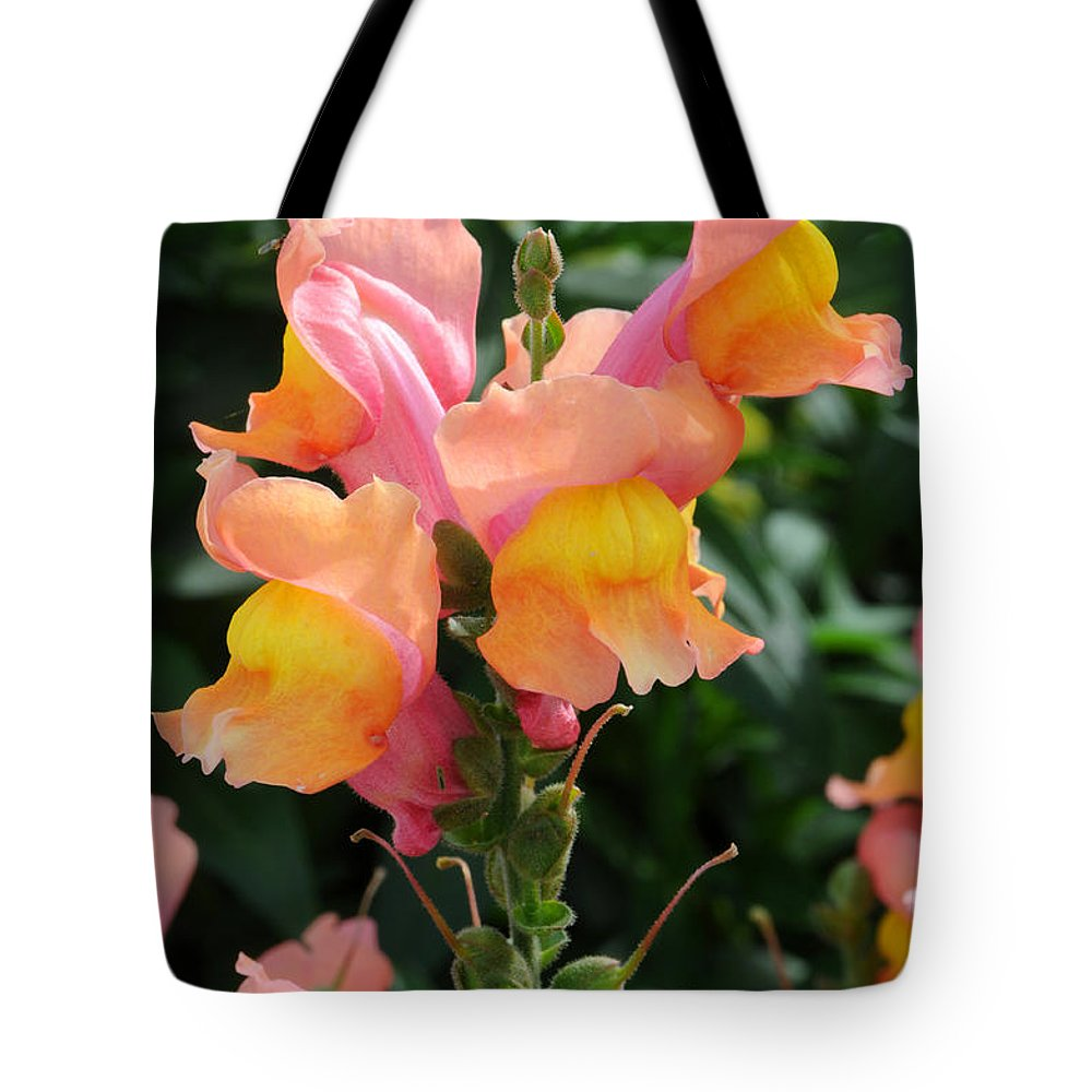 Pink And Yellow Snap Dragon Flowers Tote Bag For Sale By Gary Whitton