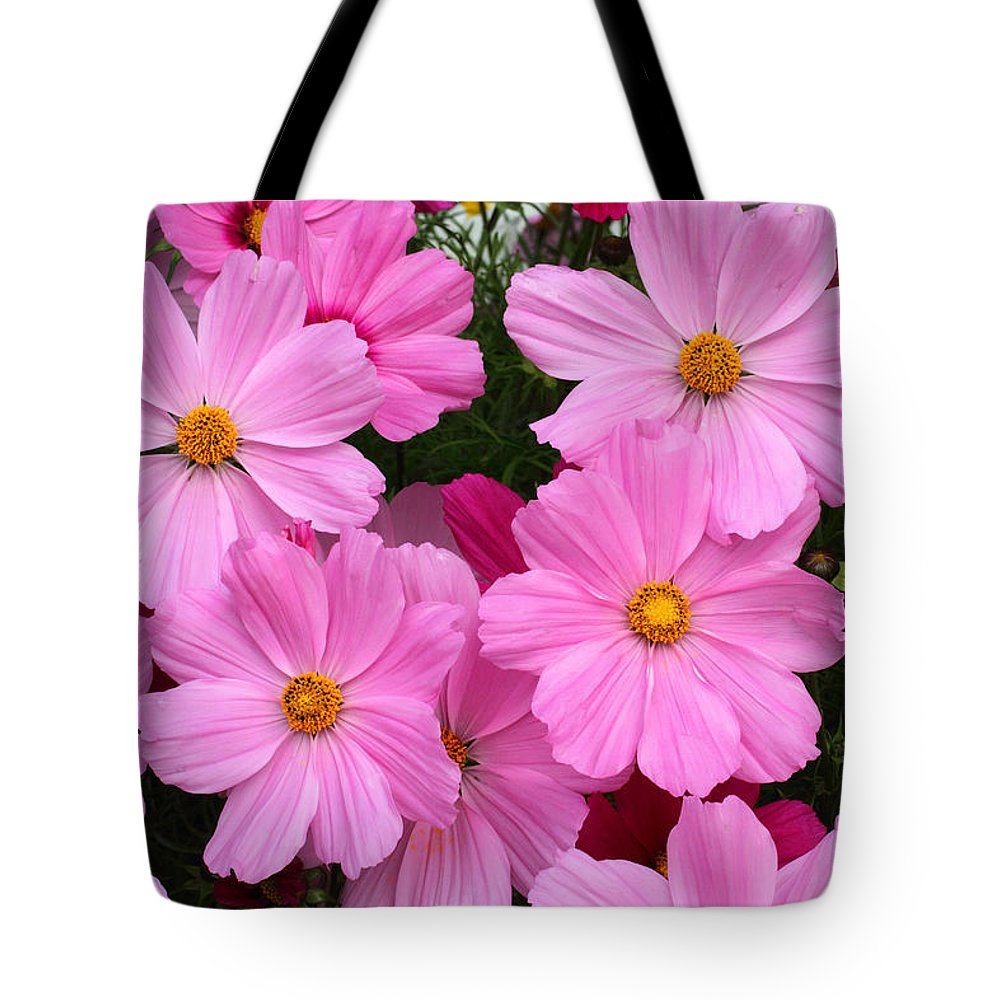 Doug Lloyd Tote Bag featuring the photograph Pink Cosmos by Doug Lloyd