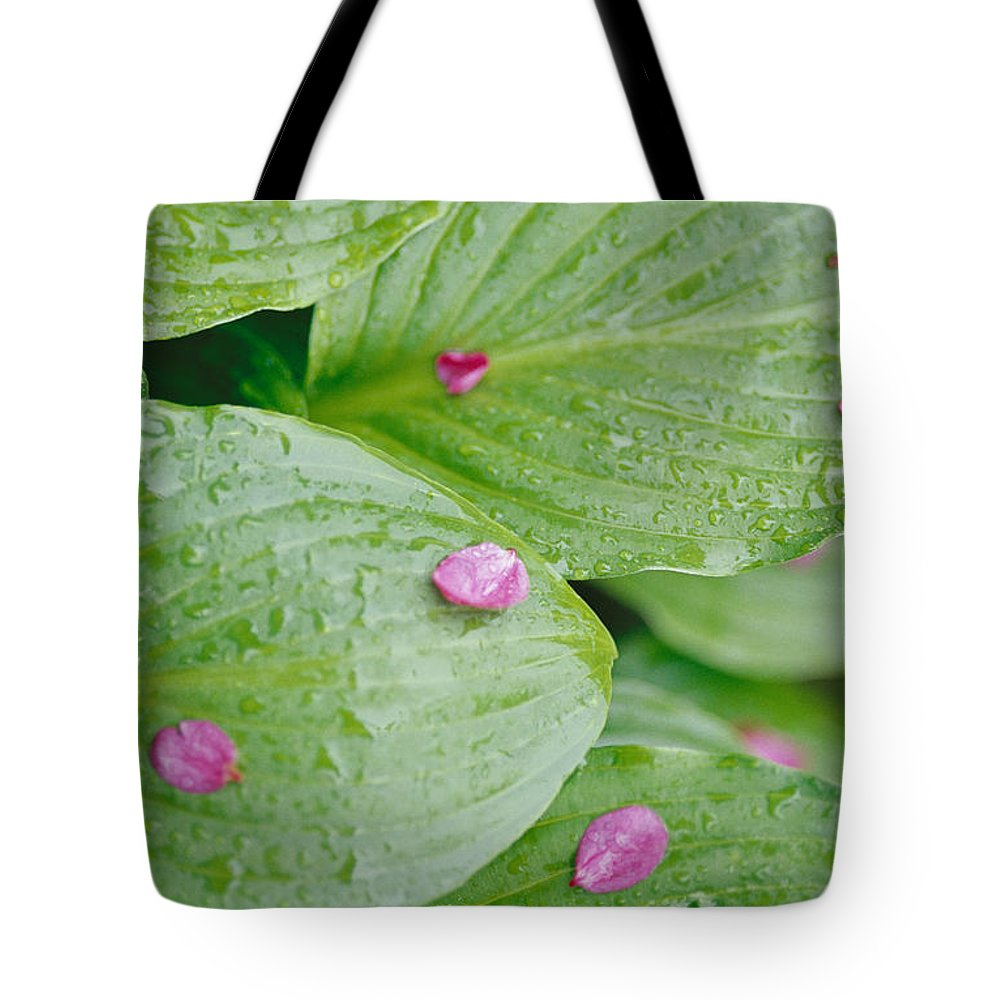 United States Of America Tote Bag featuring the photograph Pink Flower Petals Resting On Dew by Heather Perry