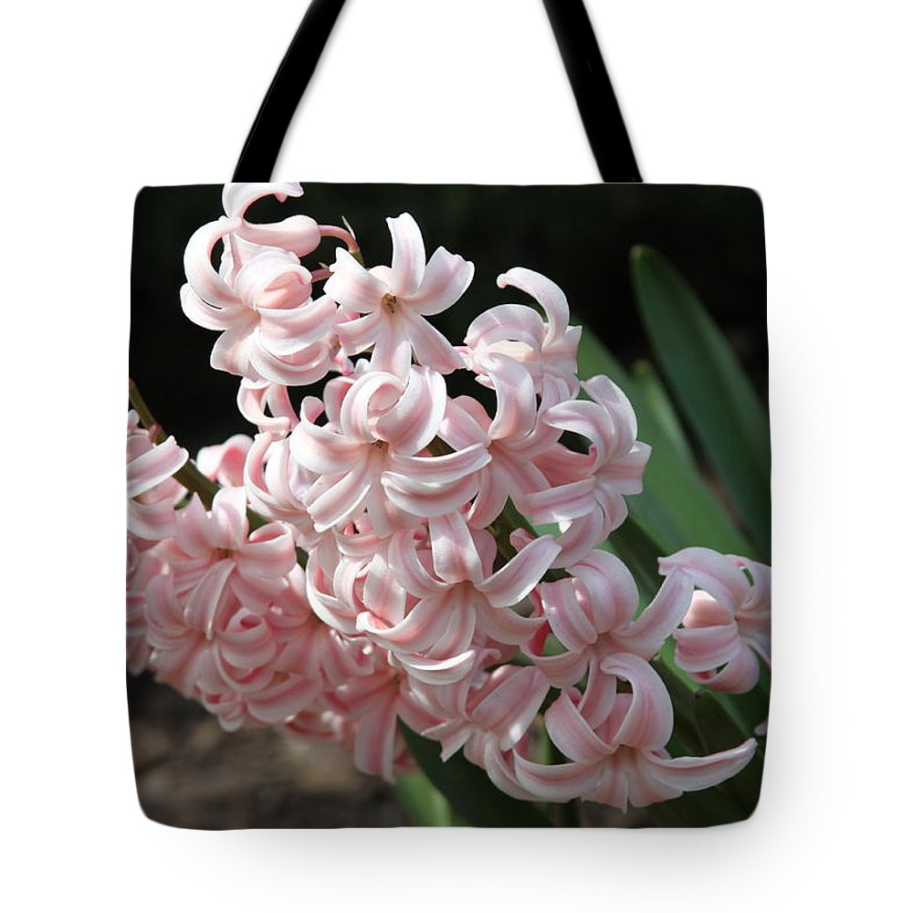 Flower Tote Bag featuring the photograph Pink Hyacinth by Andrea Lynch