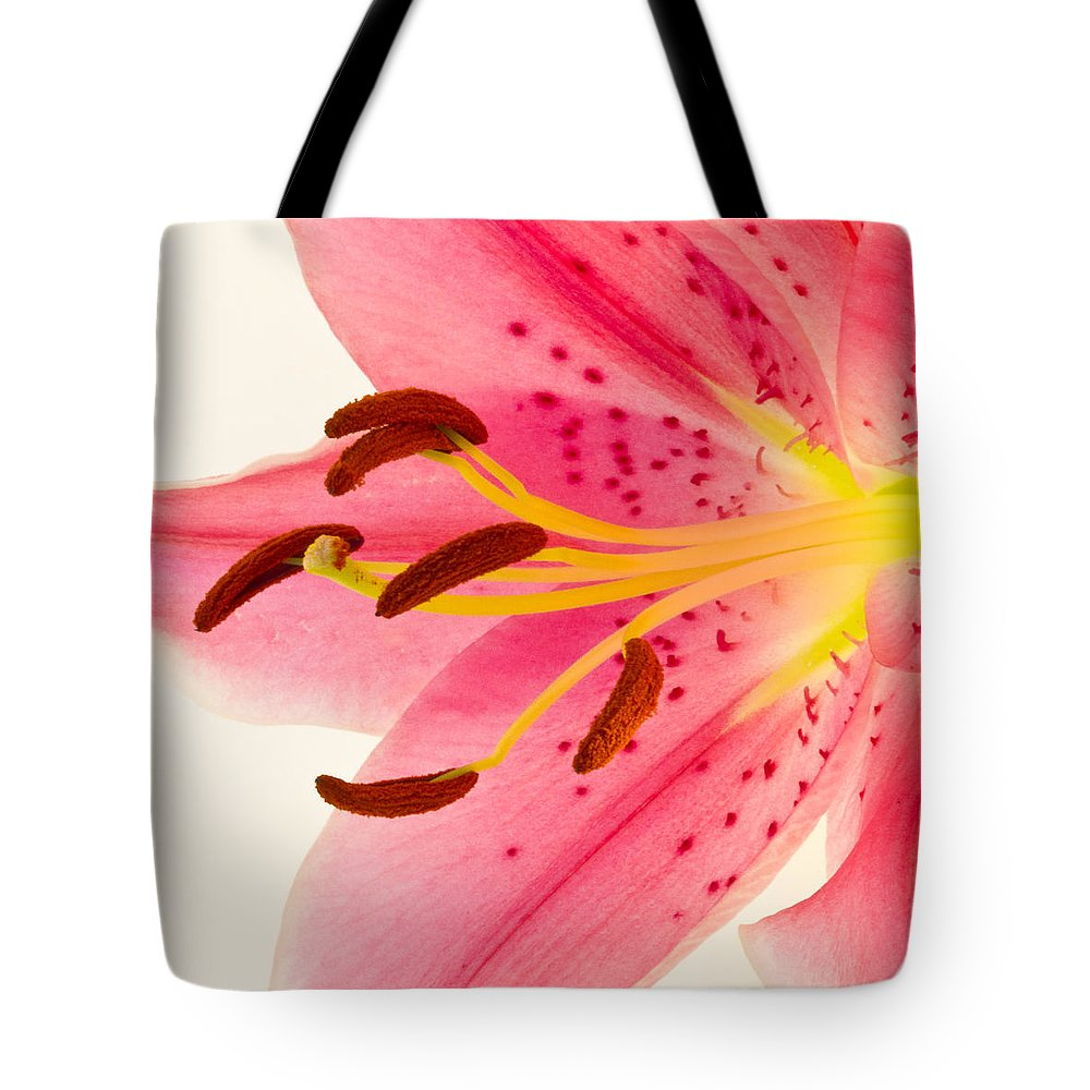 Lily Tote Bag featuring the photograph Pink Lily Square Version by Bill Swindaman