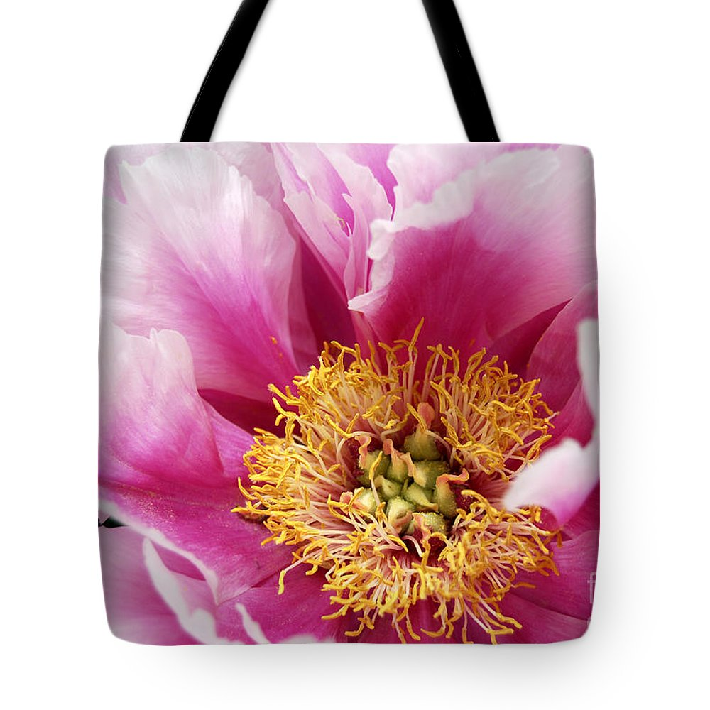 Pink Peony Flower Tote Bag featuring the digital art Pink Peony Flowers Series 8 by Eva Kaufman