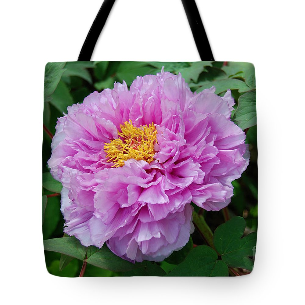 Pink Peony Flower Tote Bag featuring the digital art Pink Peony Flowers Series 9 by Eva Kaufman