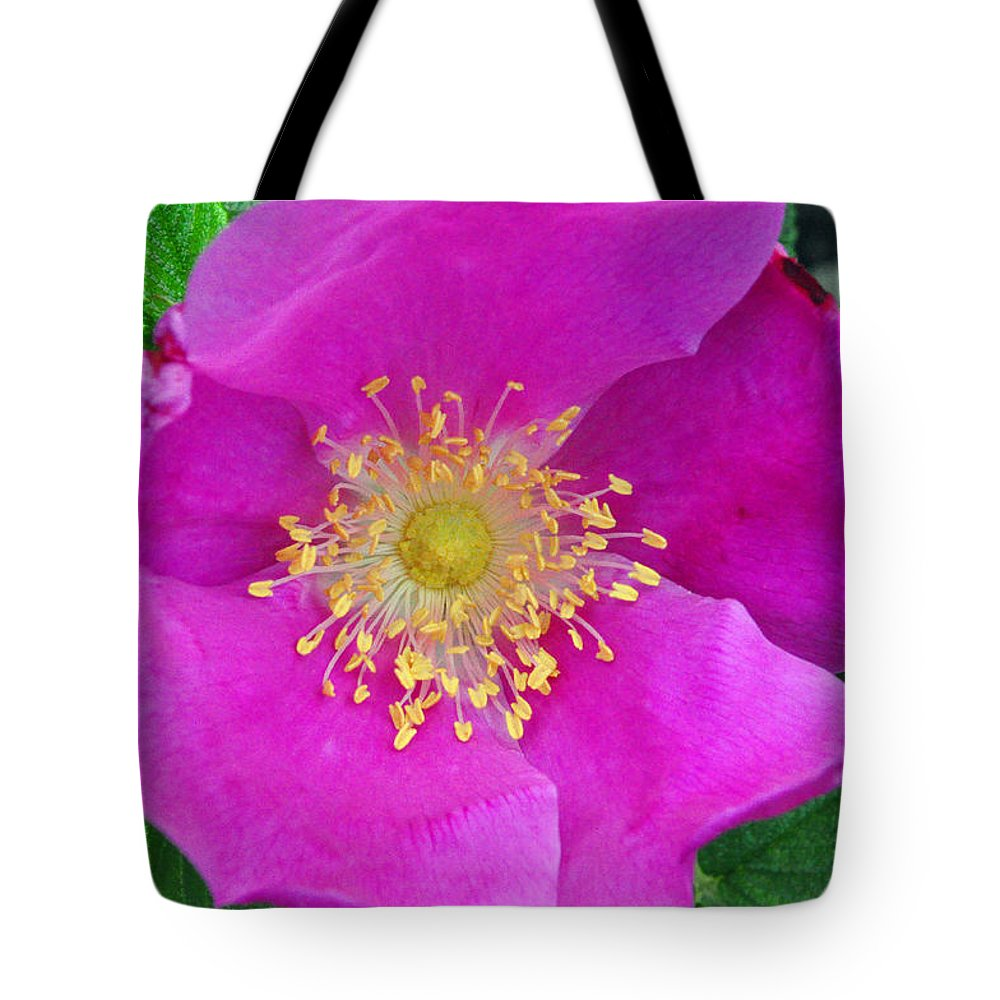 Pink Portulaca Tote Bag featuring the photograph Pink Portulaca by Tikvah's Hope