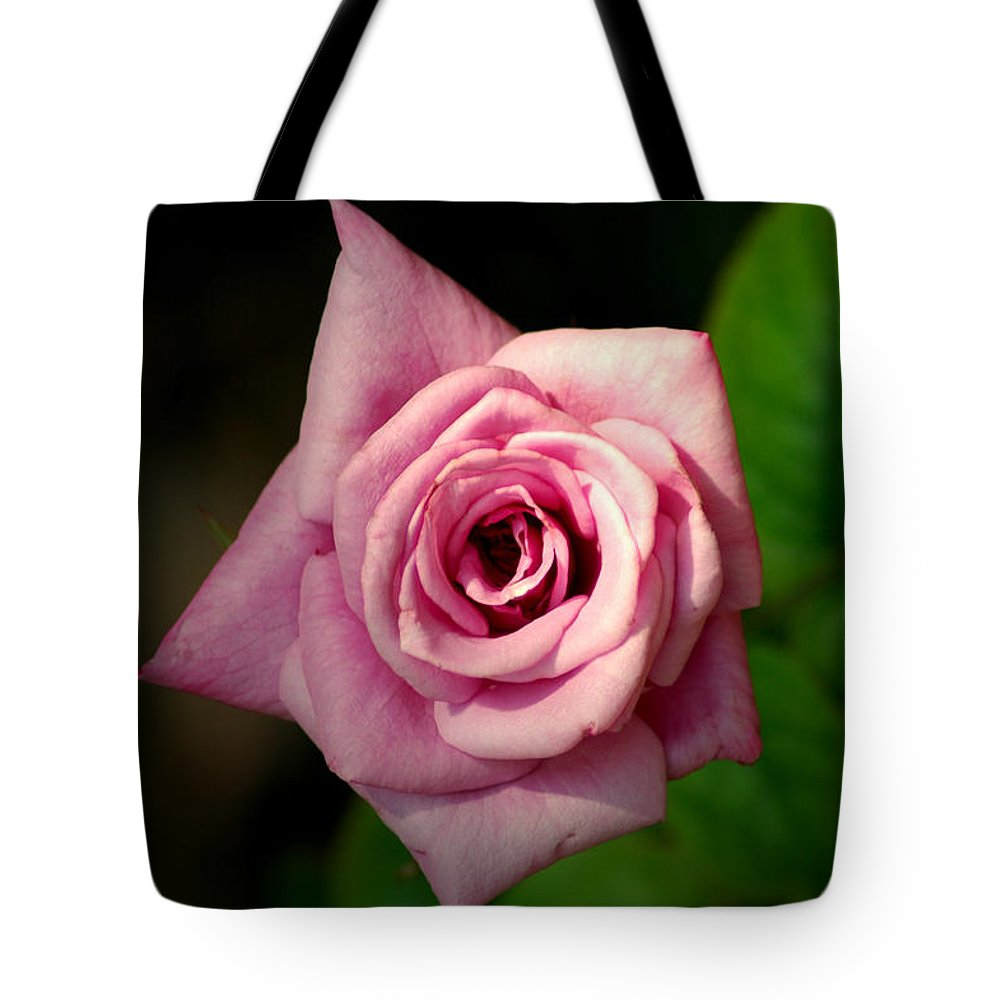 Flower Tote Bag featuring the photograph Pink Rose by David Weeks
