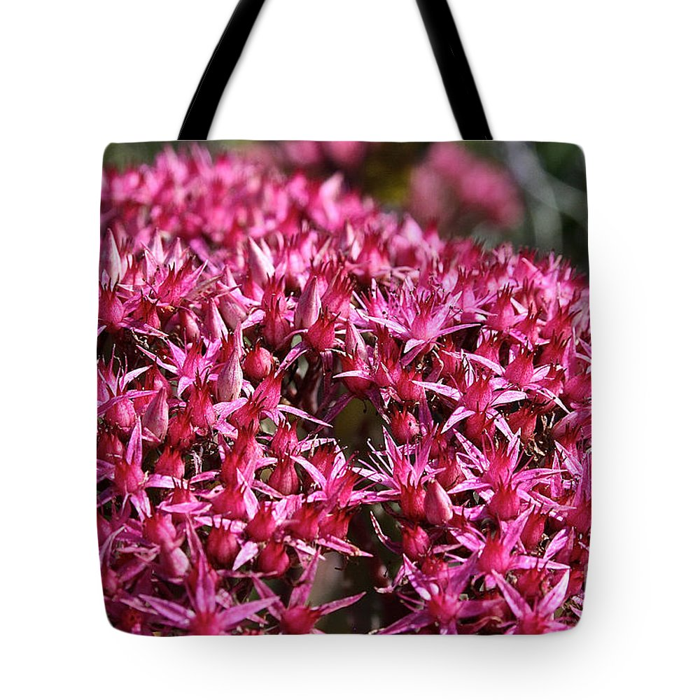 Outdoors Tote Bag featuring the photograph Pink Starz by Susan Herber