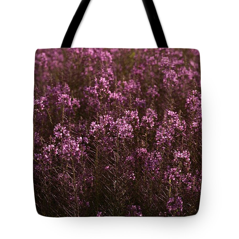 Plants Tote Bag featuring the photograph Pink Wildflowers by Mattias Klum