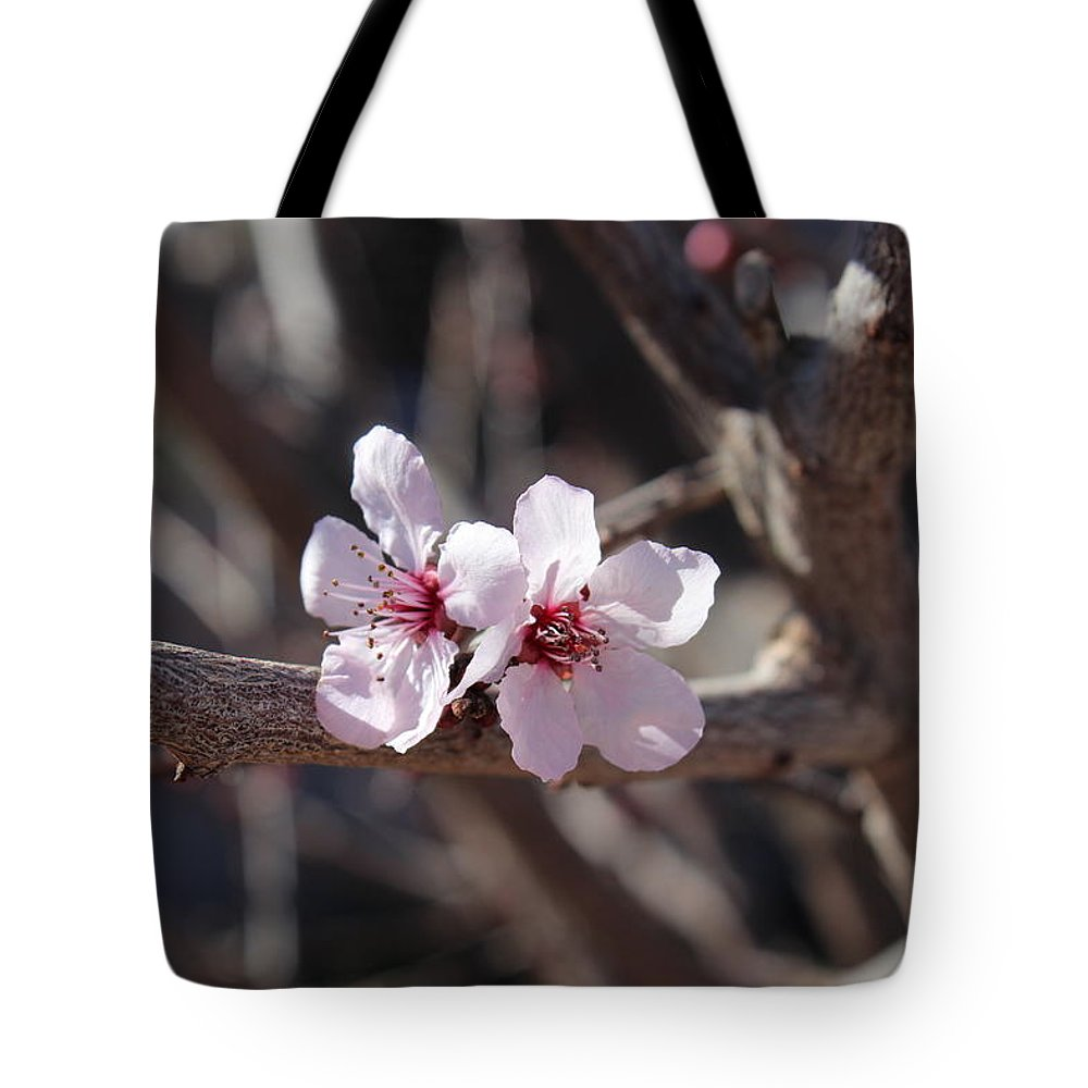 Floral Tote Bag featuring the photograph Plum Blossoms 2 by Kume Bryant