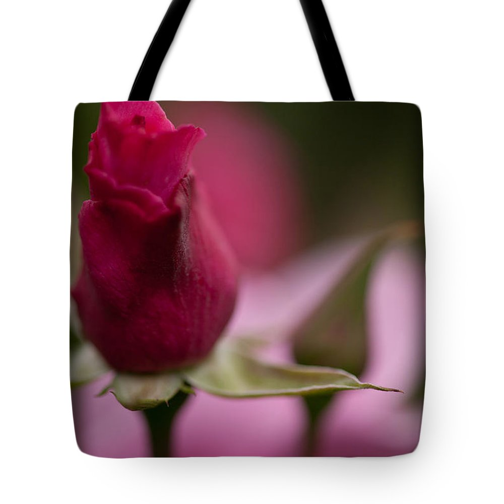 Rose Tote Bag featuring the photograph Pointedly by Mike Reid