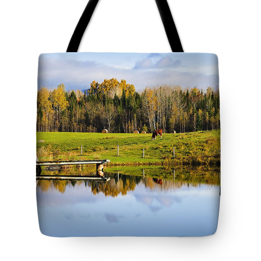 Colour Image Tote Bag featuring the photograph Pond And Cattle Near Mansonville by Yves Marcoux