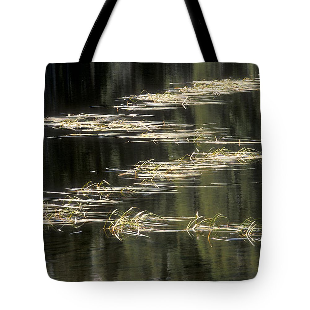 Bronstein Tote Bag featuring the photograph Pond And Grass Abstract by Sandra Bronstein