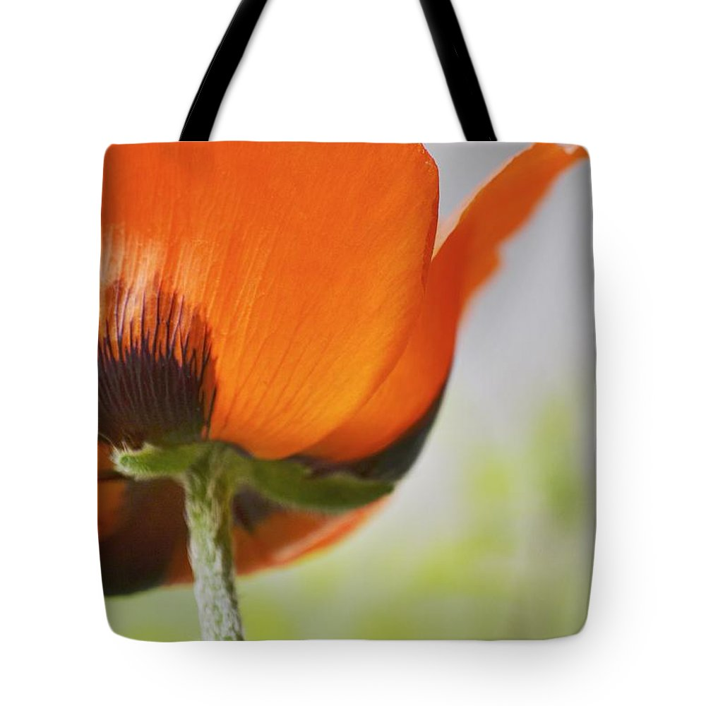 Poppy Tote Bag featuring the photograph Poppy by Traci Cottingham