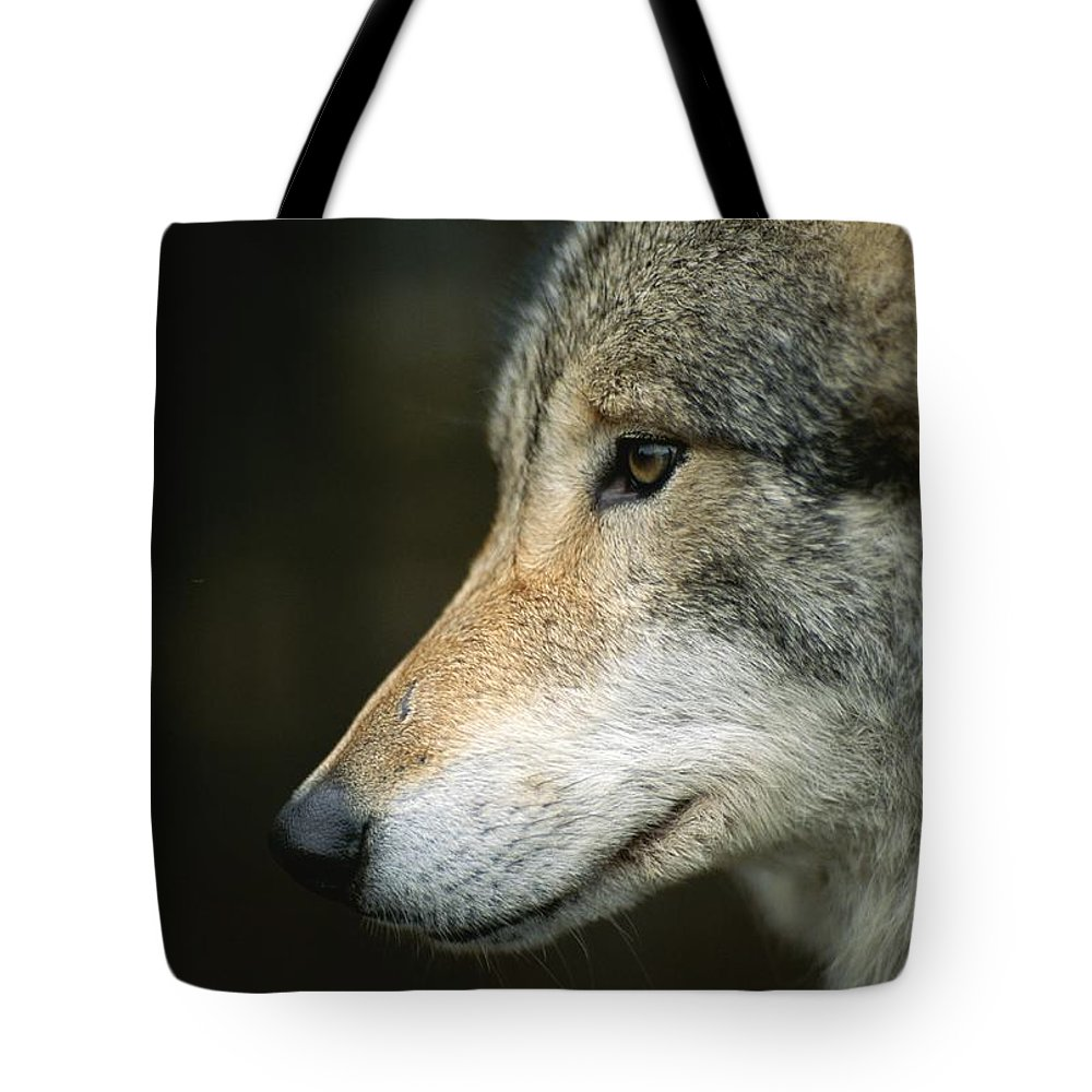 Animals Tote Bag featuring the photograph Portrait Of A Wolf by Mattias Klum