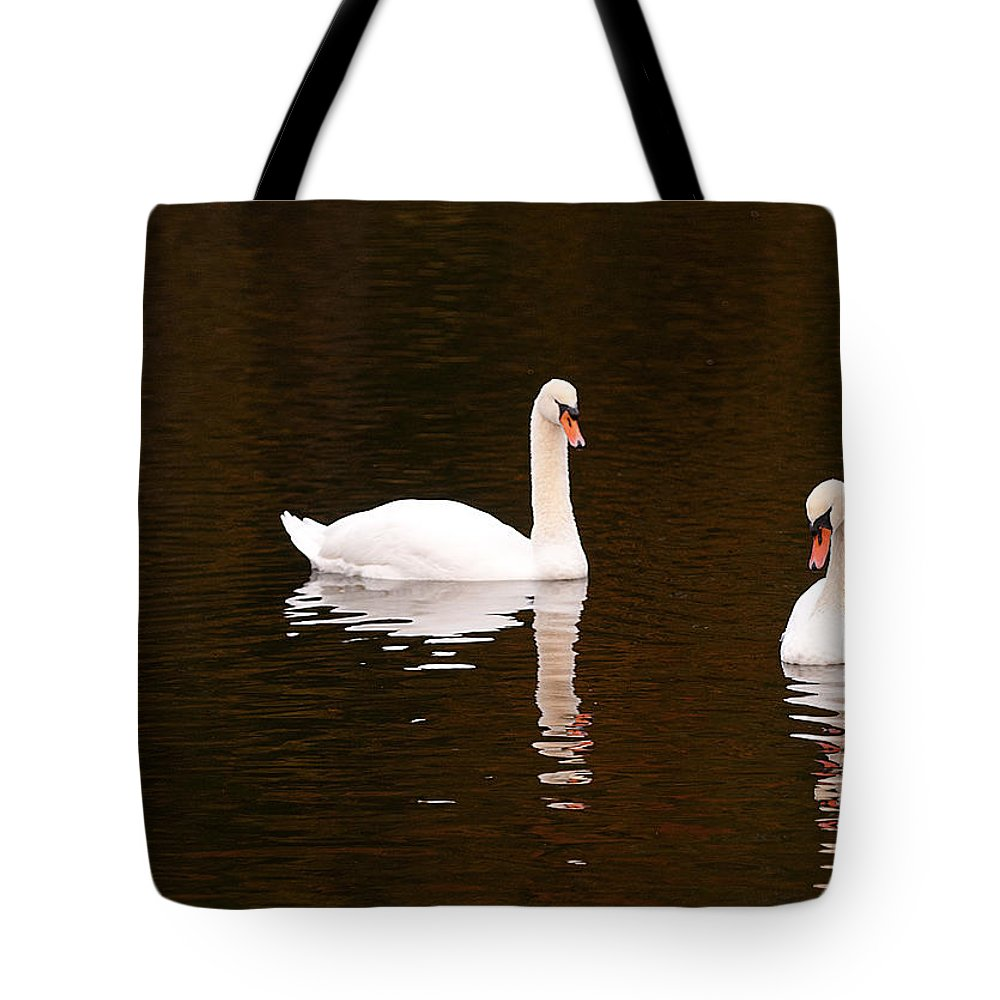 Posing Tote Bag featuring the photograph Posing by Paul Mangold
