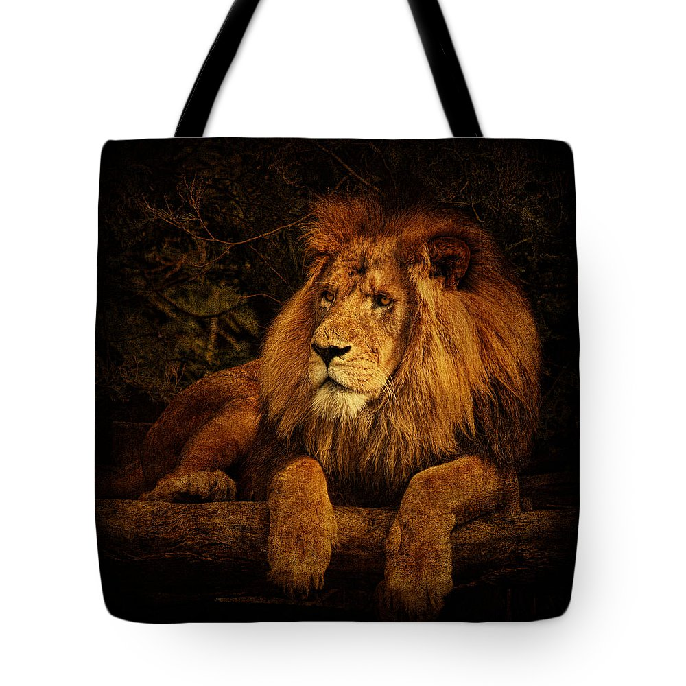 Lion Tote Bag featuring the photograph Pragmatism by Andrew Paranavitana
