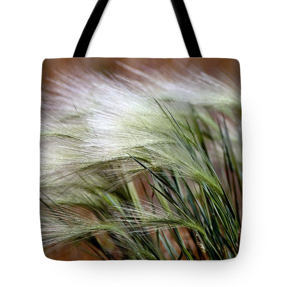 grasses Tote Bag featuring the photograph Prairie Grass, Badlands National Park by Raymond Gehman
