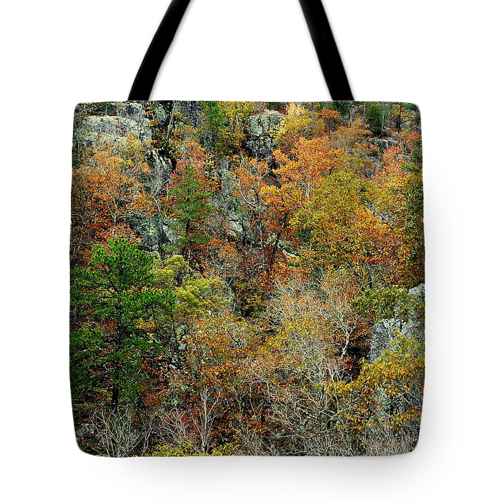 Prarie Hollow Tote Bag featuring the photograph Prarie Hollow Gorge In Autumn by Greg Matchick