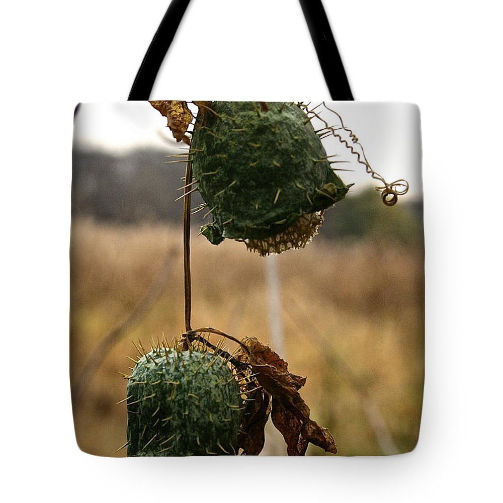 Tote Bag featuring the photograph Prickly Bells by Susan Herber