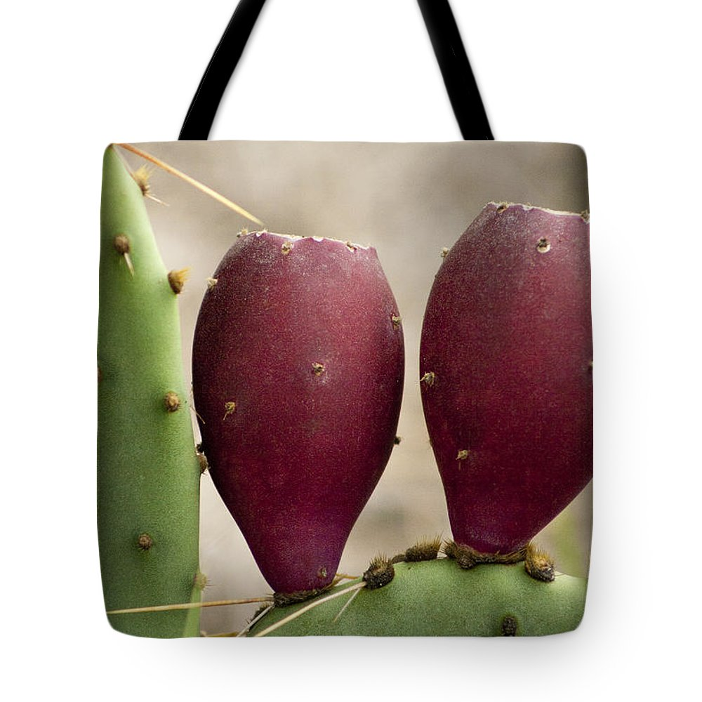 Opuntia Engelmannii Tote Bag featuring the photograph Prickly Pear Cactus Fruit by Kathy Clark