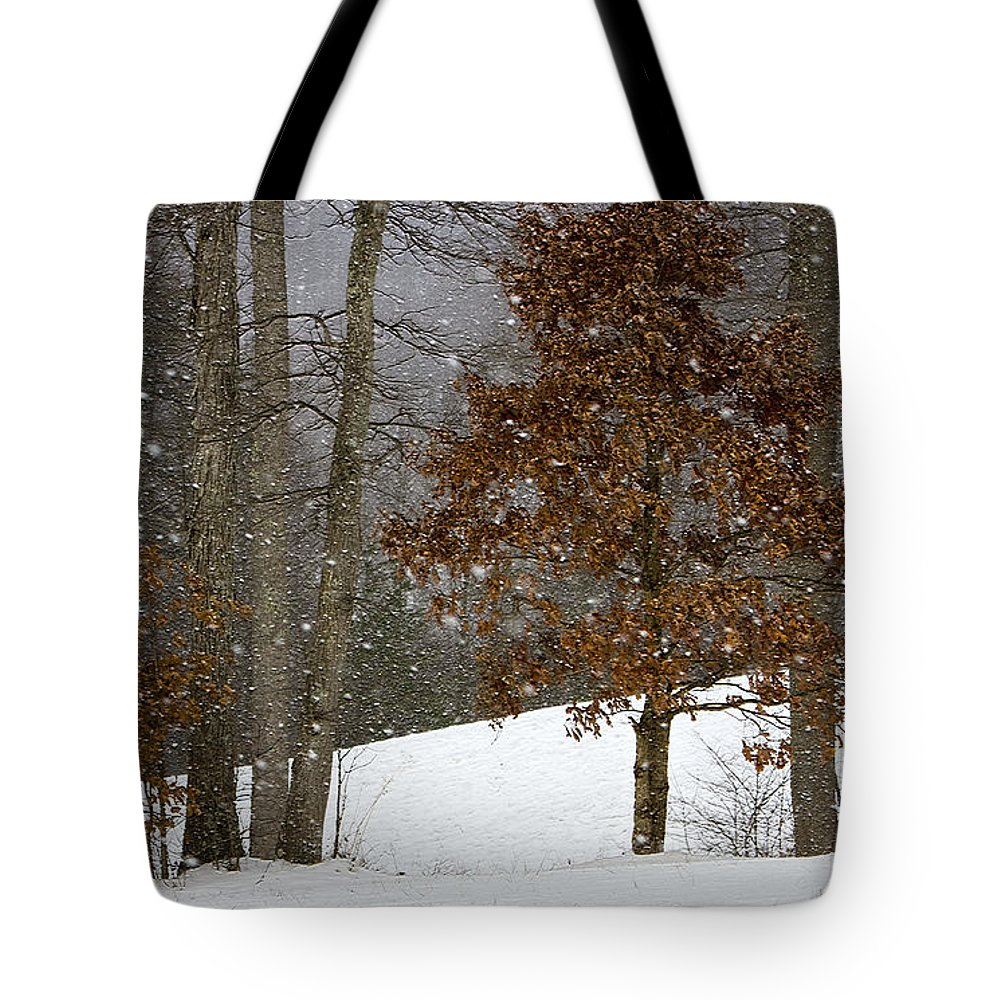 Landscape Tote Bag featuring the photograph Promises To Keep by Ron Jones