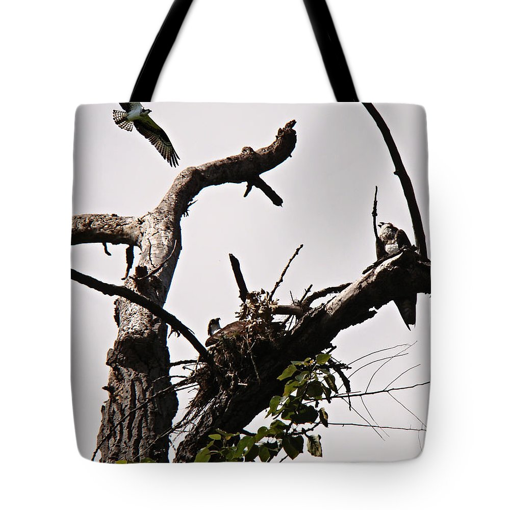 Osprey Tote Bag featuring the photograph Protector Of The Nest by Nick Kloepping