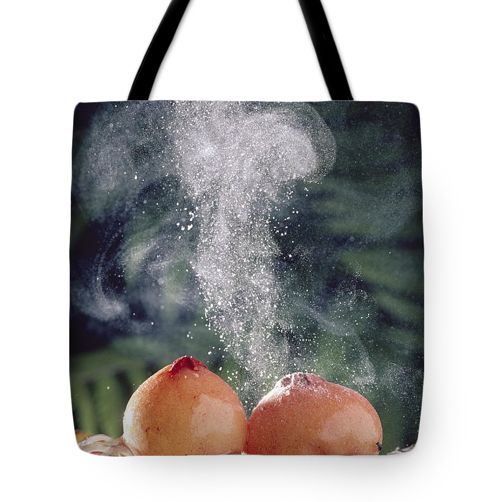 Mp Tote Bag featuring the photograph Puffballs Releasing Spores by Michael and Patricia Fogden