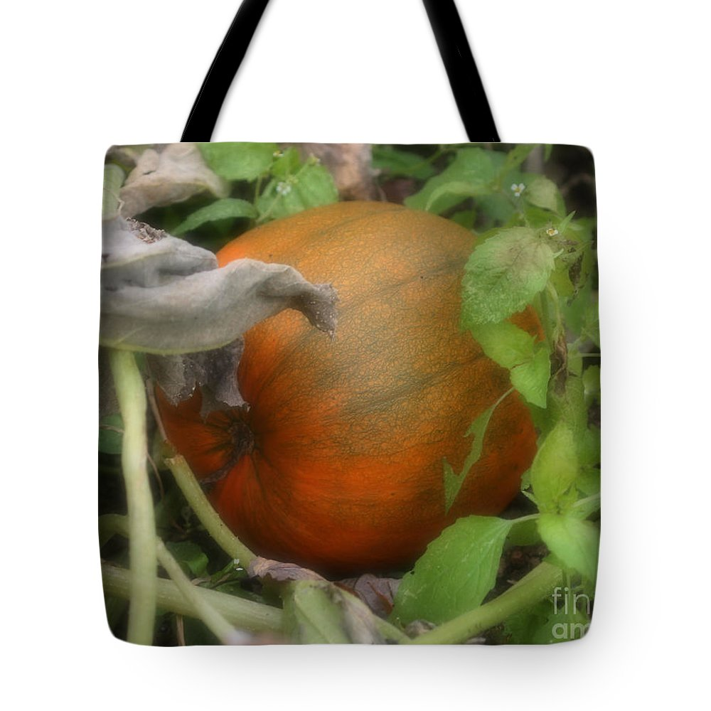 Nature Tote Bag featuring the photograph Pumpkin On The Vine by Smilin Eyes Treasures