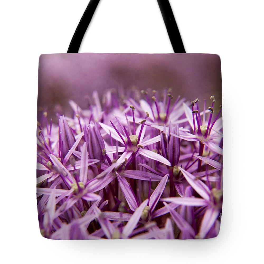 Flower Tote Bag featuring the photograph Purple Allium Christophii Macro by Darleen Stry