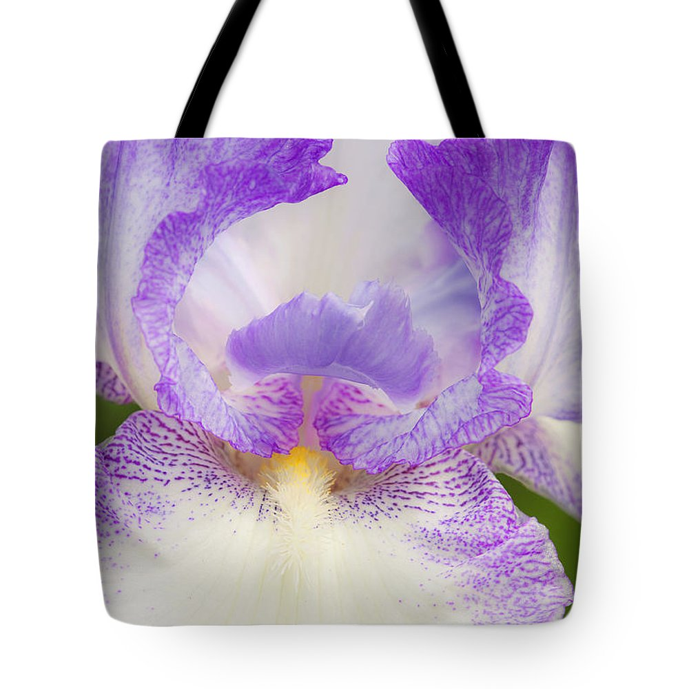 Iris Tote Bag featuring the photograph Purple Iris Bliss by Regina Geoghan