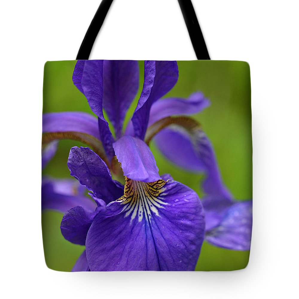 Iris Tote Bag featuring the photograph Purple Iris by David Rucker