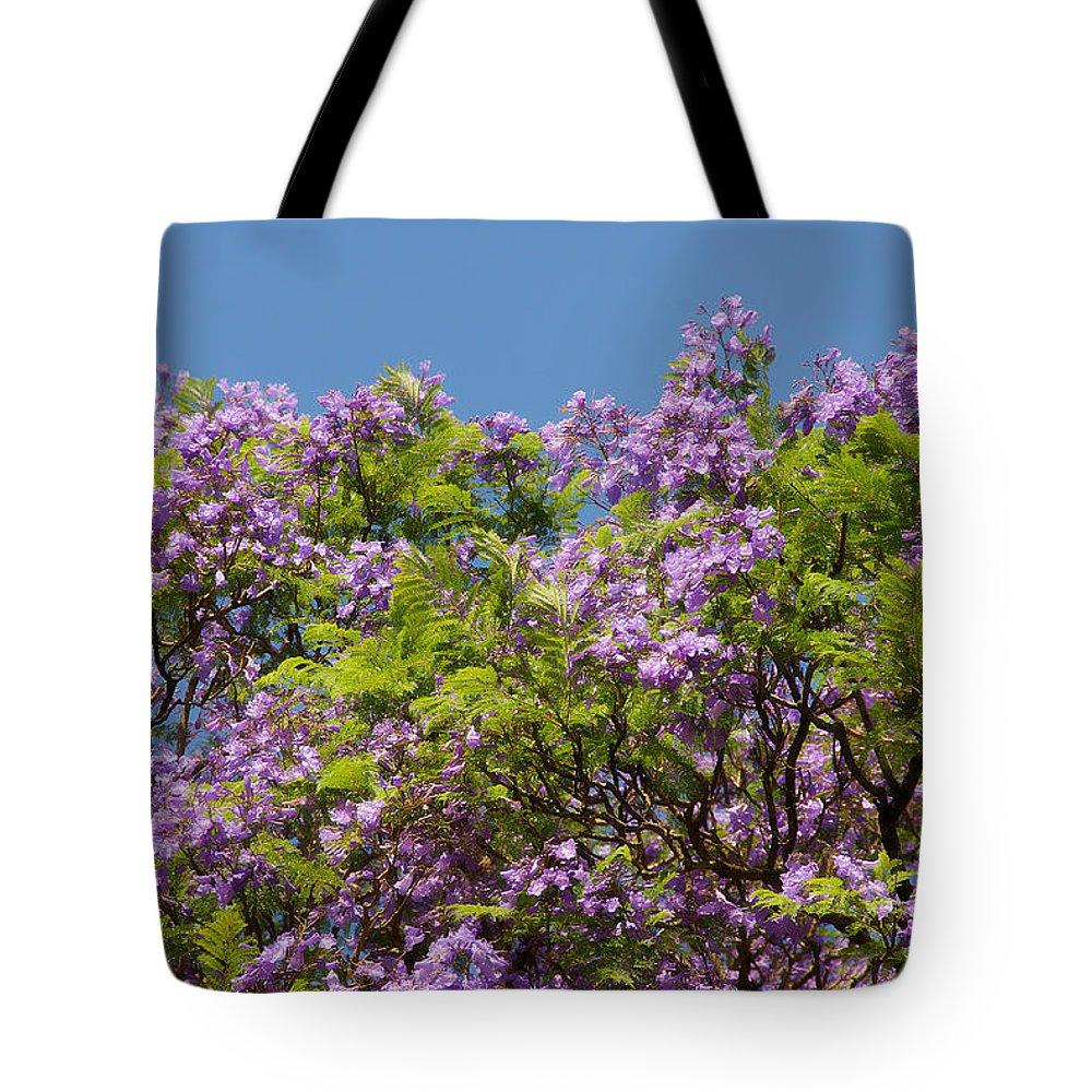 Nature Tote Bag featuring the photograph Purple Prelude by Georgiana Romanovna