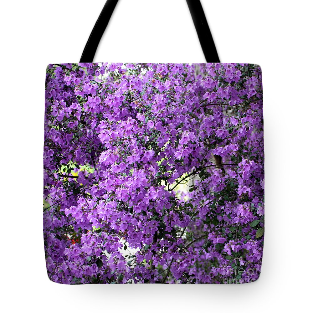Purple Flowers Tote Bag featuring the photograph Purple Screen Square by Carol Groenen