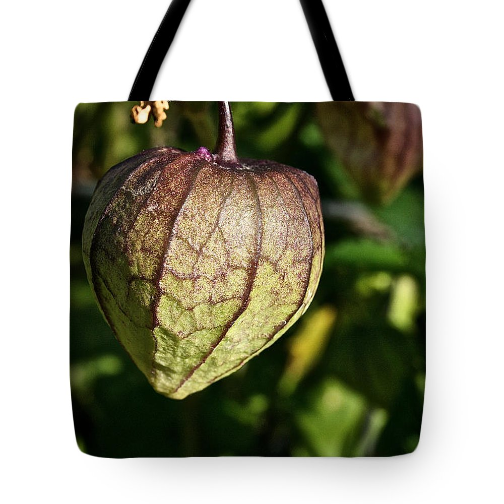 Outdoors Tote Bag featuring the photograph Purple Tomatillo by Susan Herber