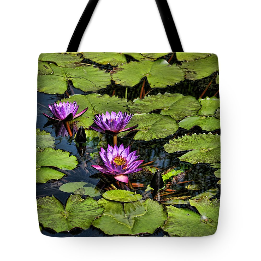 Purple Tote Bag featuring the photograph Purple Water Lilies - Nymphaea Capensis by Kathy Clark