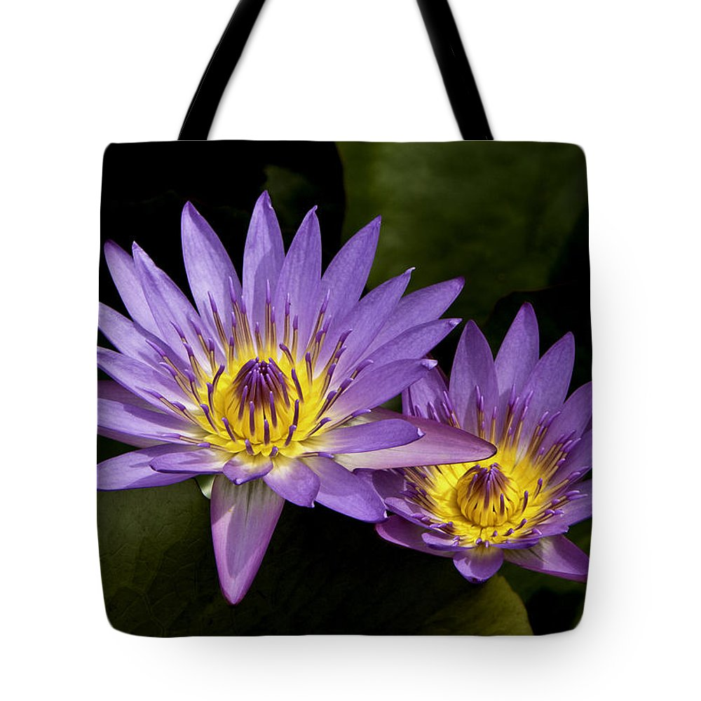 Hana Tote Bag featuring the photograph Purple Water Lilies by Leon Roland