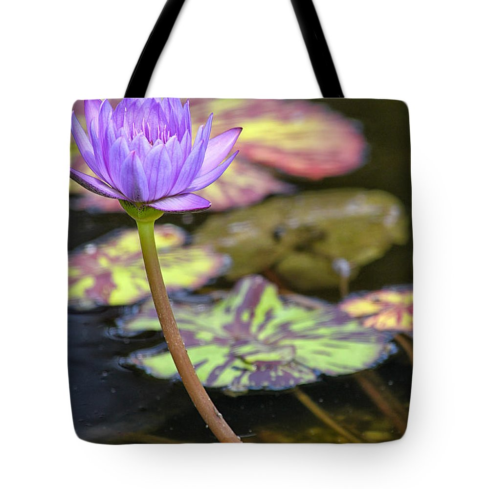 Flower Tote Bag featuring the photograph Purple Water Lilly by Lauri Novak