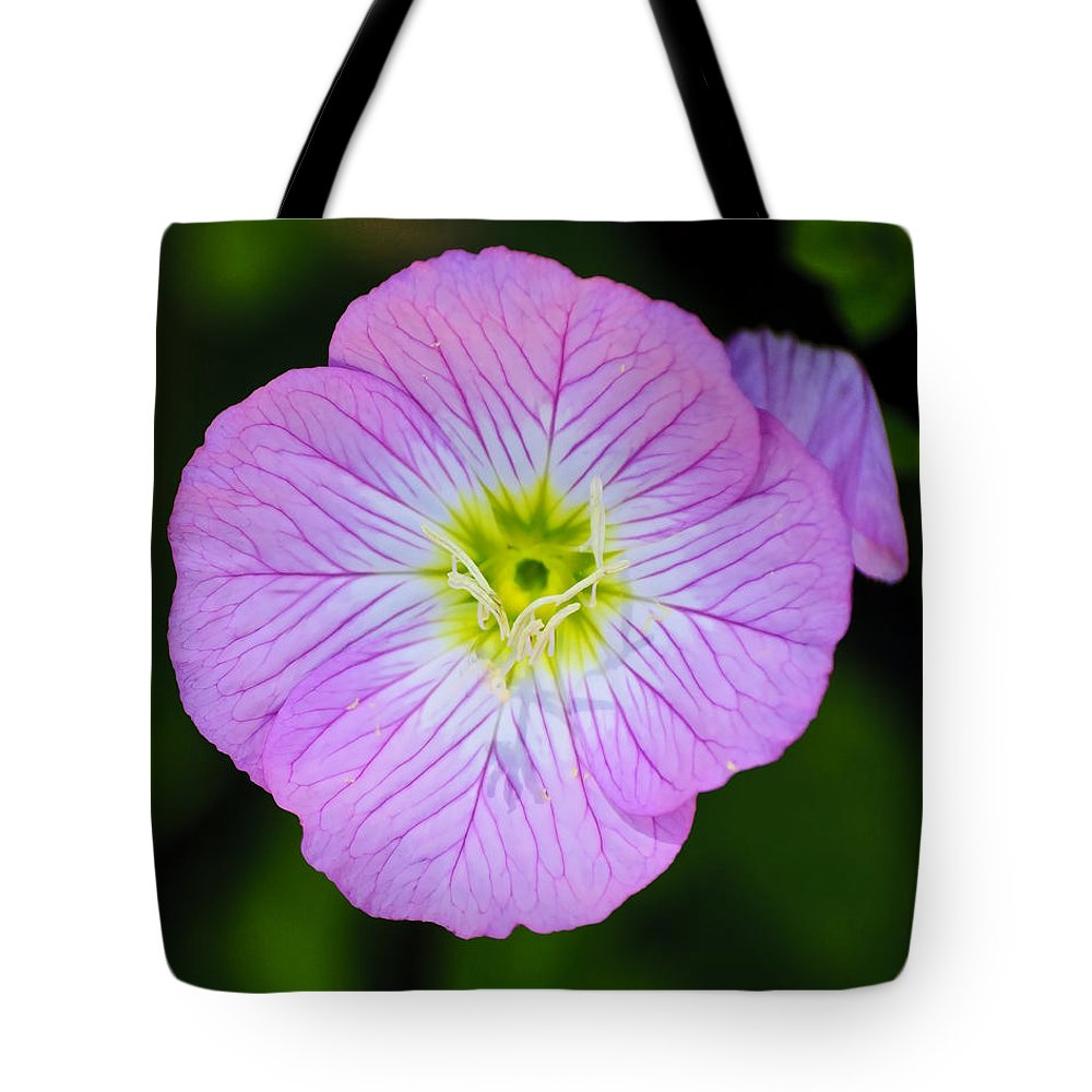 Flower Tote Bag featuring the photograph Purple Wildflower by Diego Re