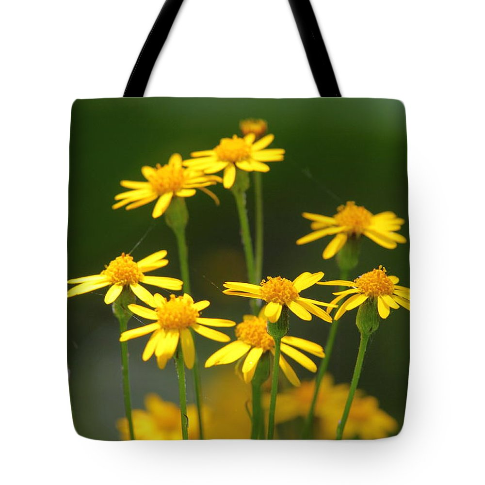 Ragwort Tote Bag featuring the photograph Ragwort by Bruce J Robinson