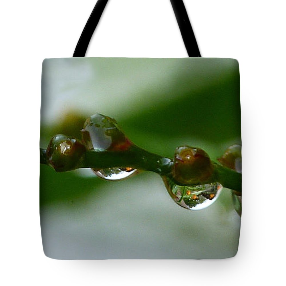 Raindrops Tote Bag featuring the photograph Rain Drops by Lynn Bolt