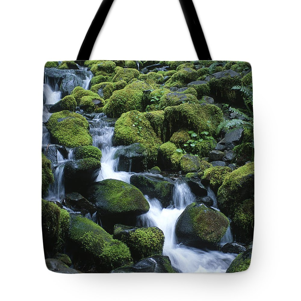 Rainforest Tote Bag featuring the photograph Rain Forest Stream by Sandra Bronstein