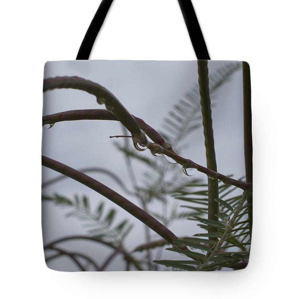 Raindrops Tote Bag featuring the photograph Raindrops by Douglas Barnard