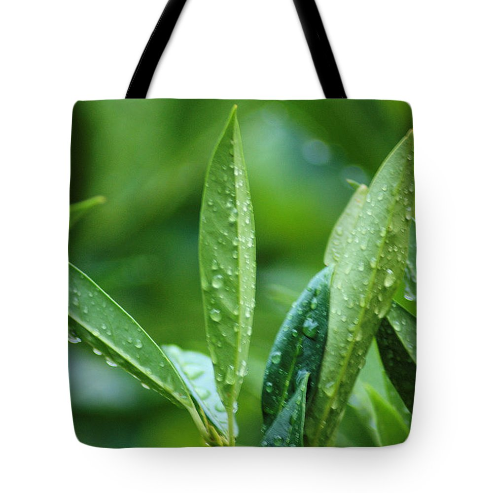 Rain Tote Bag featuring the photograph Raindrops by Michael Merry