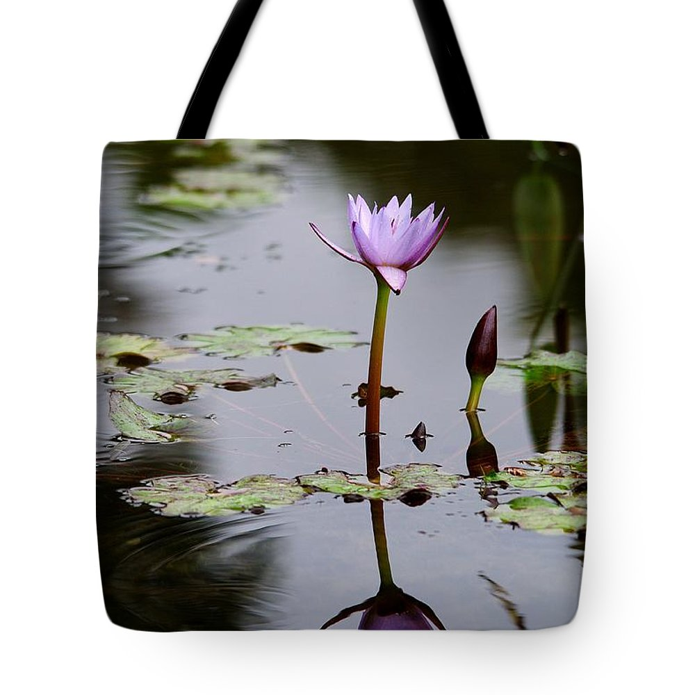Roy Williams Tote Bag featuring the photograph Rainy Day Lotus Flower Reflections V by Roy Williams