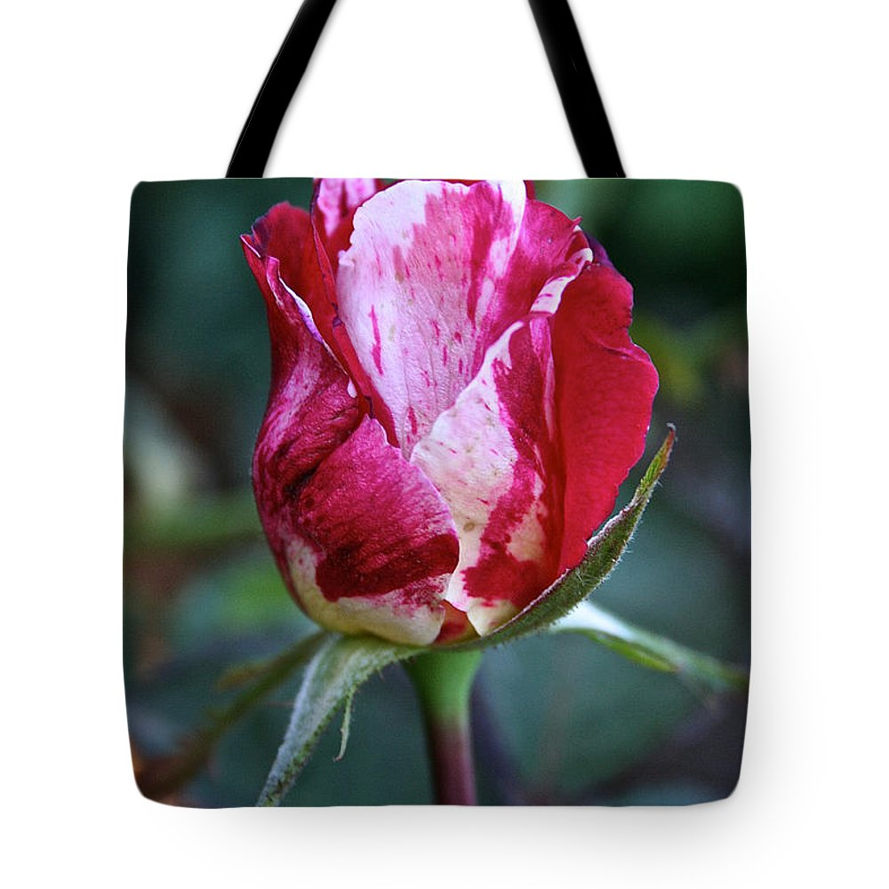 Flower Tote Bag featuring the photograph Raspberry Swirl Rose by Susan Herber