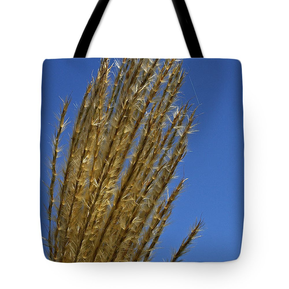 Grass Tote Bag featuring the photograph Reach For The Sky by Susan Herber