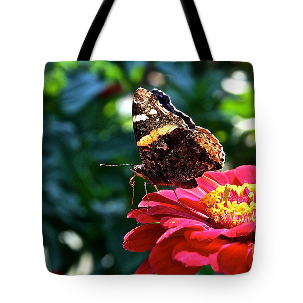 Outdoors Tote Bag featuring the photograph Red Admiral Probocis by Susan Herber