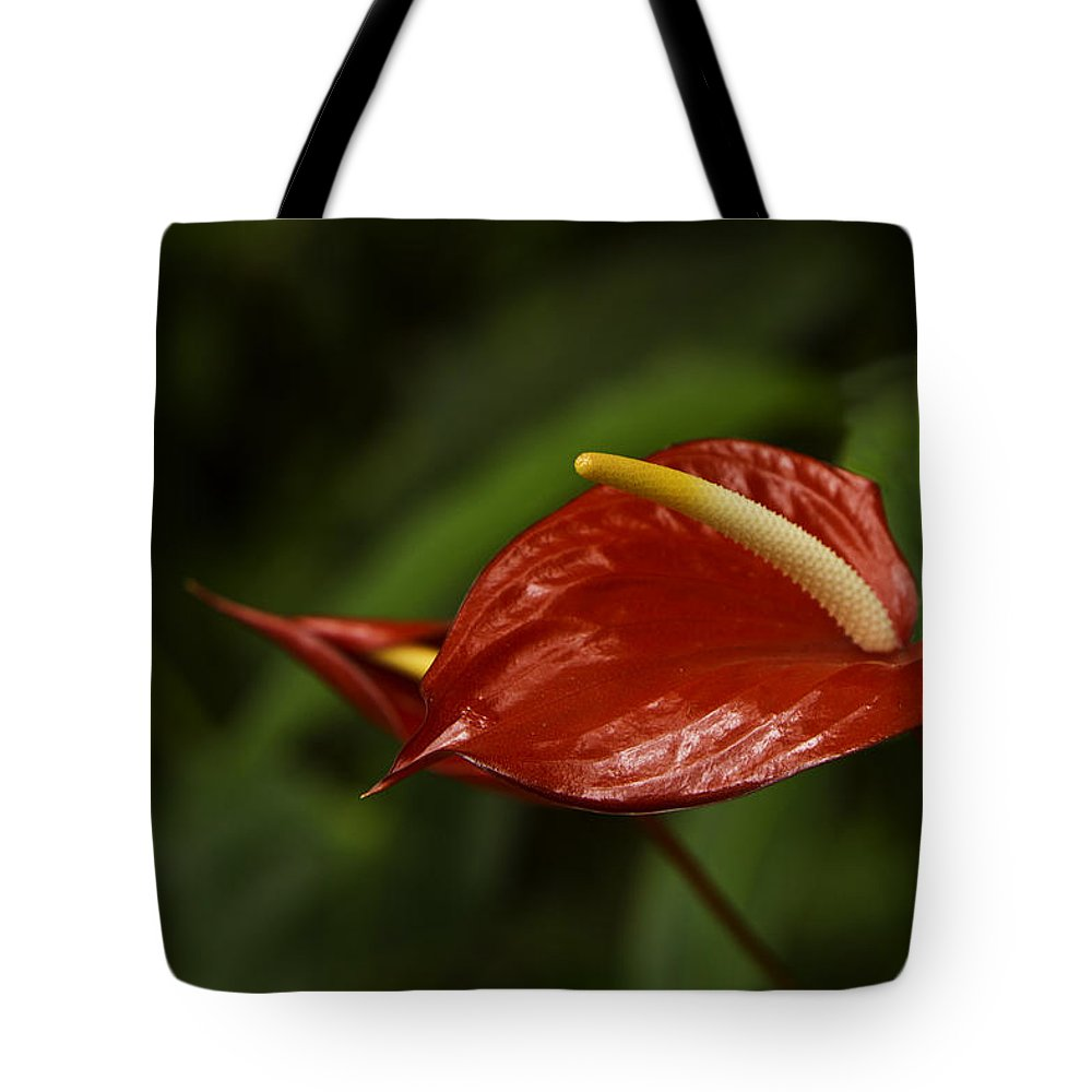 Hana Tote Bag featuring the photograph Red Anthurium by Leon Roland