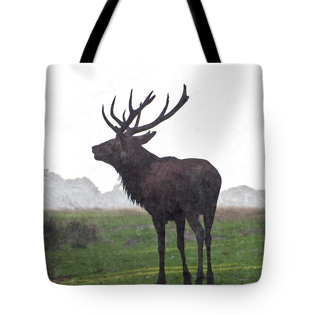 Deer Tote Bag featuring the photograph Red Deer Painting by Dawn OConnor