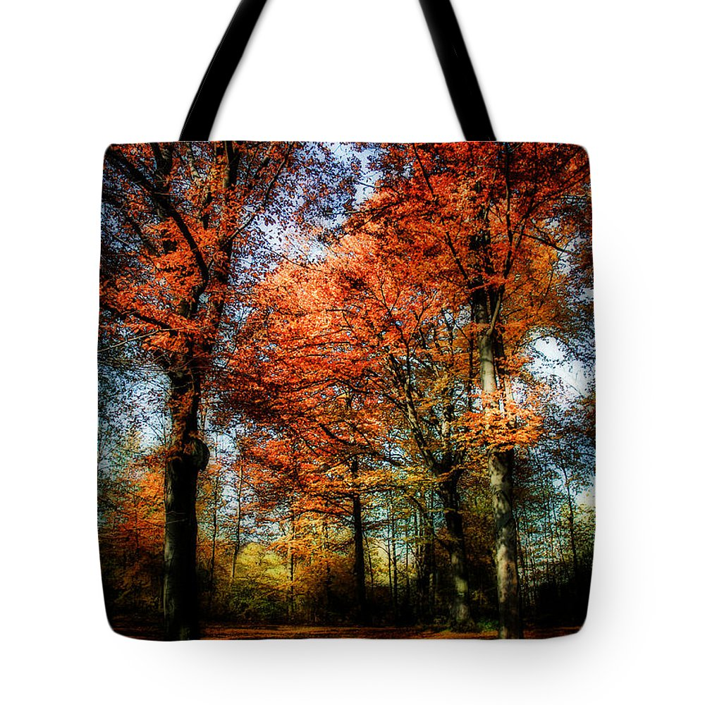 Autumn Tote Bag featuring the photograph Red Fall by Hannes Cmarits