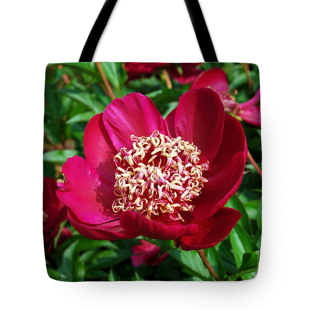 Red Peony Flower Tote Bag featuring the digital art Red Peony Flowers Series 2 by Eva Kaufman